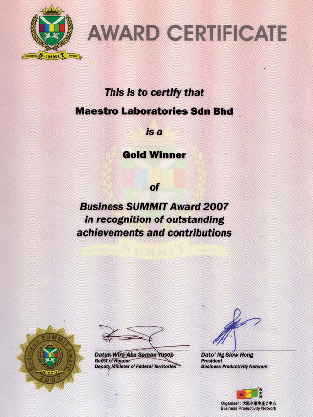 Business SUMMIT Award in 2007